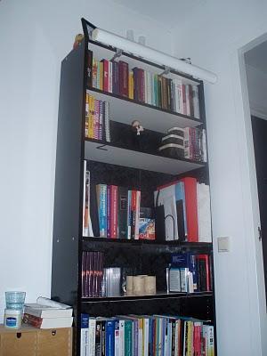 billy bookshelves